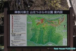 県立山北つぶらの公園